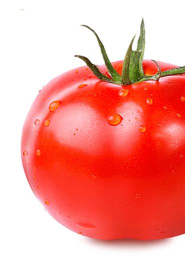 https://www.conservashola.com/wp-content/uploads/2018/01/ConservasHola-Productos-Slider-TomateFrito-1.jpg